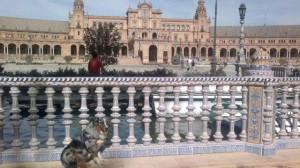Spanje 472