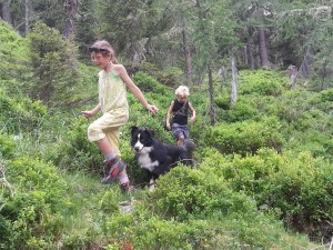 met ross bosbessen zoeken op de berg